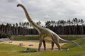 brachiosaurus size brachiosaurus the giraffe like dinosaur