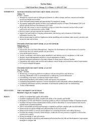 Information Security Risk Analyst Resume Samples Velvet Jobs