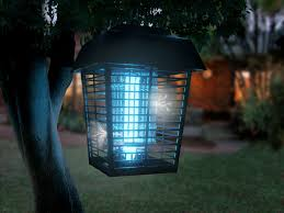 Bug Light Effectiveness Do Bug Zappers Kill Mosquitoes