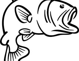bass fish coloring pages. Plain Coloring Bass20fish20coloring20pages In Bass Fish Coloring Pages I