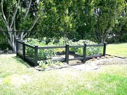 how to keep deer out of vegetable garden how to keep deer away from garden how