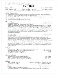 Sample Resume Computer Programmer Best of Programmer Resume Template Travel Resume Examples Computer