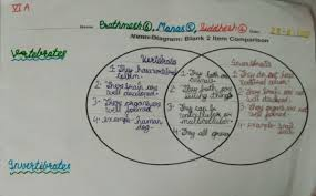 Venn Diagram Living And Nonliving Things Teaching Diversity In Living Things Using Venn Diagrams