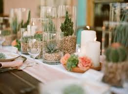 stylish décor item composed of terrariums built in tall glass vases and featuring bonsai size