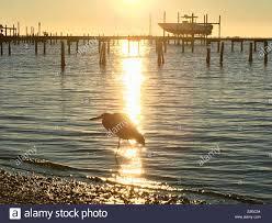 Memorable Santa Rosa Sound Florida Elliot Bay Tides Tide