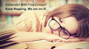 term paper writer term paper writing service term paper writer