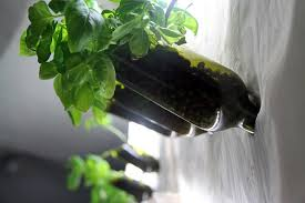 attractive design hydroponic wall garden 18