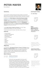 Finance Resume Adorable Director Of Finance Resume Samples VisualCV Resume Samples Database