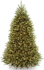 National Tree Dunhill Fir