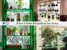 Small Picture DIY 20 Ideas of Window Herb Garden for Your Kitchen DesignRulz