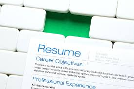 Resume Professional Writers Reviews resume Profesional Resume 95
