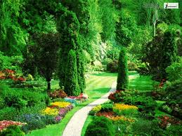 Beautiful Pictures Of Nature Desktop Beautiful Images Of Nature And With Most Pictures In The