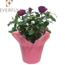 Paper Flower Pots Wrapping Kraft Paper Flower Pot Covers For Decoration Buy Kraft Paper Flower Pot Covers Kraft Paper Floral Pot Covers Kraft Paper Floristry Pot