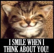 cat-smiling-meme_274x270.jpg via Relatably.com