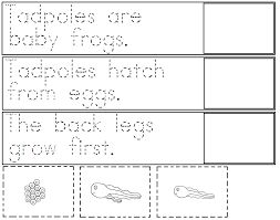 Frog Life Cycle Worksheet Cut And Paste Free Worksheets Library ...