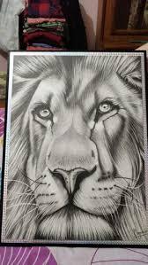 Realistic Animals Sketch