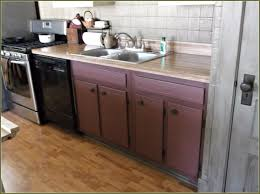 Kitchen Corner Base Cabinets Kitchen Corner Sink Base Cabinet Home Design Ideas