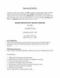 Chef Job Description Resume Resume format for Chef De Partie Best Of Cook Resume Skills Line 35