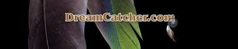 Where To Buy Dream Catchers In Toronto Stunning Authentic Handcrafted Dream Catchers DreamCatcher