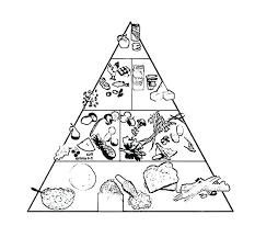 Food Pyramid Coloring Pages Food Pyramid Coloring Page At Free
