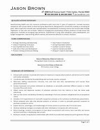 50 Elegant Advertising Agency Contract Template - Documents Ideas ...
