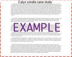 calyx corolla case study essay academic service calyx corolla case study