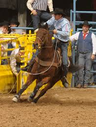ravis tryan s precious speck best known as walt is widely recognized as one of the best horses ever to carry a team roping header into an arena