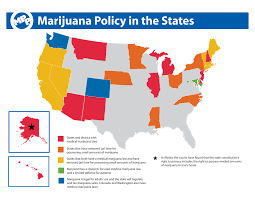 is your practice ready for the pot rush there are currently 23 states plus the district of columbia that have enacted laws to legalize medical marijuana