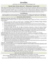 Commercial Real Estate Appraiser Sample Resume Inspiration Real Estate Resume Example Analyst Consultant