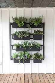Hanging Kitchen Herb Garden 25 Best Ideas About Hanging Herb Gardens On Pinterest Indoor