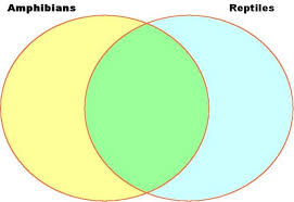 Difference Between Amphibians And Reptiles Venn Diagram Nylearns Org Amphibians And Reptiles