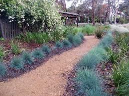 Small Picture 53 best Australian native garden images on Pinterest Australian