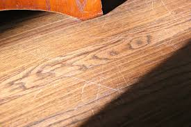 Grrrrrr.... Scratches Under The Dining Room Chairs.