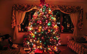christmas tree lighting ideas. Most Seen Pictures Featured In Enchanting Classic Christmas Tree Decorating Ideas For Your Homes Lighting T