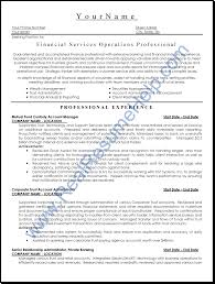 Professional Resume Writers 19 Executive Packagenardellidesign
