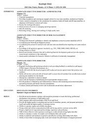 Executive Director Resume Template Word Samples Non Profit Sample