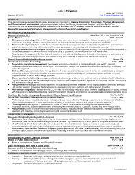 Information Technology Director Resume Information Technology Resume Examples Free Templates Format 4