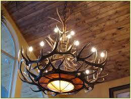 elk antler chandelier lighting home design ideas intended for contemporary residence elk horn chandelier designs