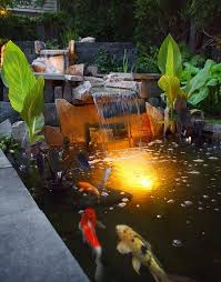 Pond lighting ideas Led Canna Lilies Koi Pond And Waterfall Switzers Nursery And Landscaping Northfield Landscaping Network Pond Lighting Ideas Landscaping Network