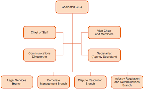 New Organizational Structure Of Home Care Agency
