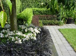 Small Picture 92 best GardensOutdoor spaces images on Pinterest Hedges