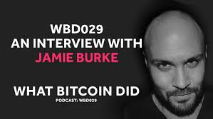 Token Economies and The Fat Protocol Thesis with Jamie Burke from Outlier  Ventures — What Bitcoin Did