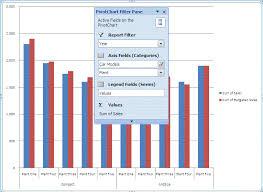Create Customize Excel Pivot Table Charts Using Vba
