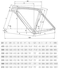 Bianchi Oltre Size Chart Oltre Xr4 Disc Frameset