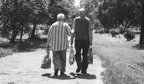 Riforma pensioni: serve una quota 41 per tutti al posto della pensione  anticipata - Pensioni e Fisco