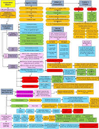 5 Image Image Chart 4th Amendment Chart Www