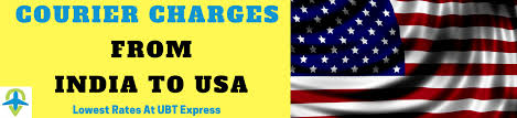 send courier to usa from delhi mumbai pune bangalore hyderabad gurgaon or from anywhere in india