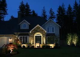 interesting front yard lighting
