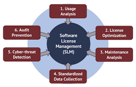 Software Licensing Model Software License Management Optimization Sie Consulting