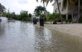 adams drive in key largo florida has been flooded for nearly a month after